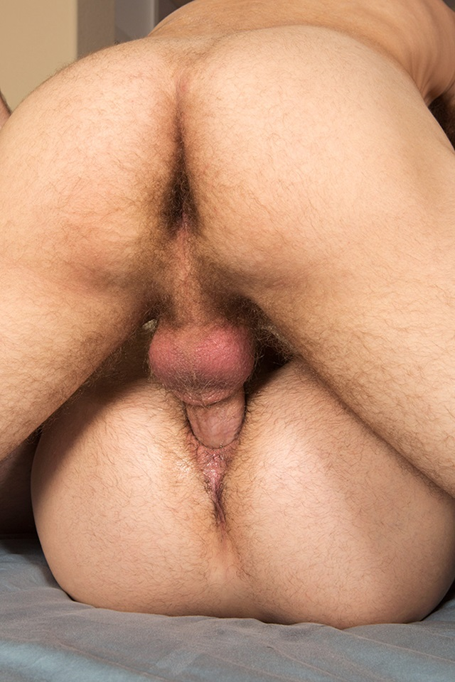Free gaping male asshole pics